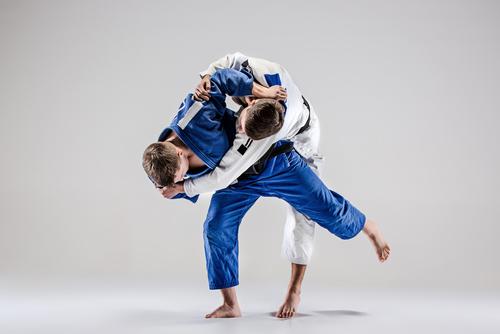 championnats du monde de judo à Vourles